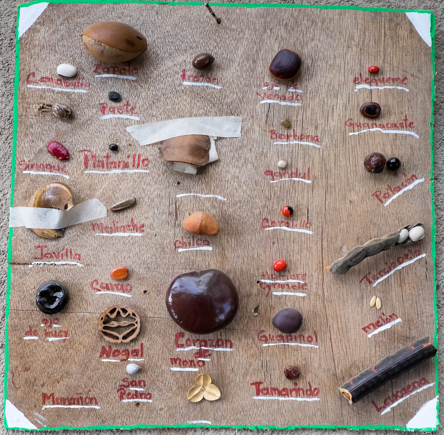 seeds for jewelry making