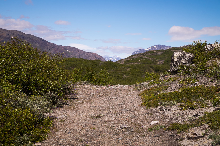 Section of the trail that guides the Ridge Hike near Narsarsuaq in South Greenland