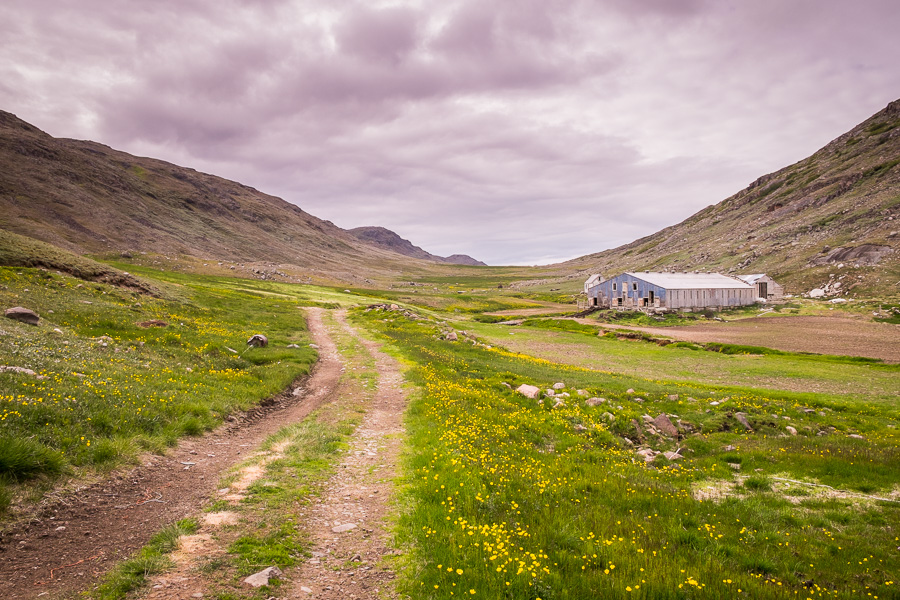 Large shed at the Qorlortup Itinnera Farm near Qassiarsuk in South Greenland