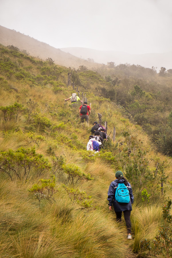 Hiking companions climbing through the Páramo on the way to the summit of Volcán Pasochoa near Quito, Ecuador