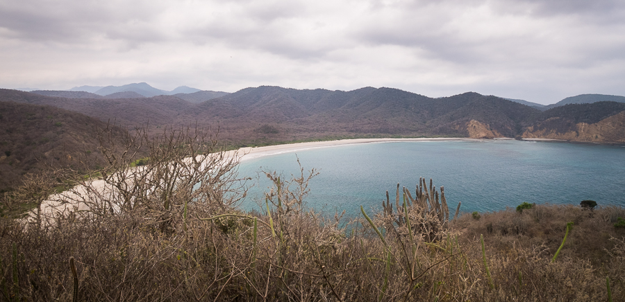 Partially obscured view of the horseshoe shape of Los Frailles beach from the lookout along the hike.