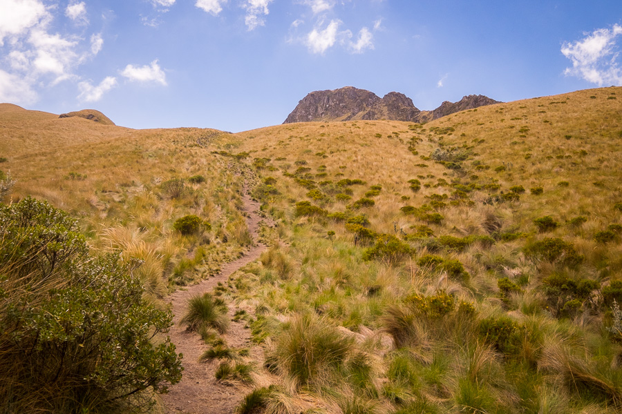 The main hiking trail as it climbs to the summit of Fuya Fuya near Otavalo, Ecuador
