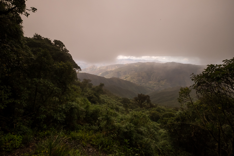View down to the valley from Los Miradores hike in Podocarpus National Park near Loja, Ecuador