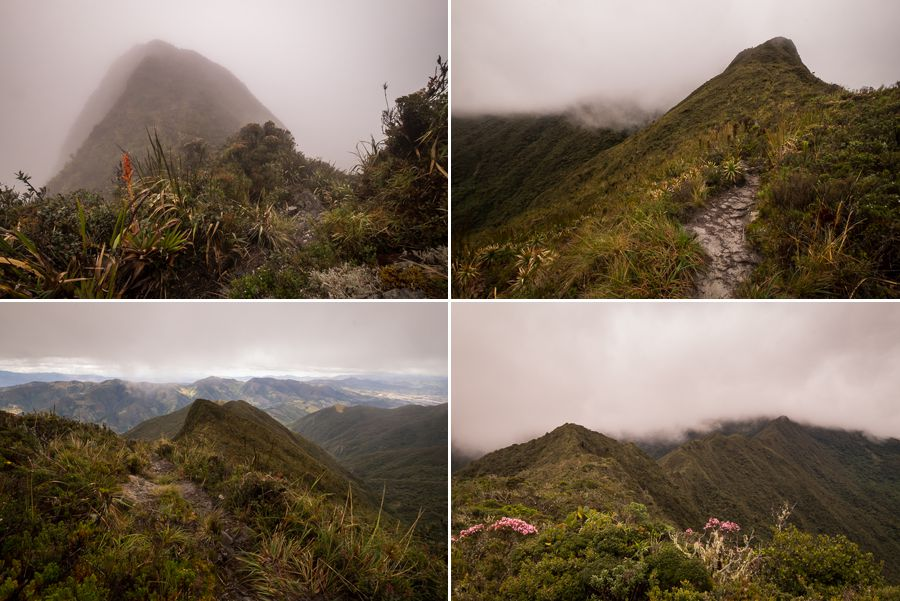 Various views from Los Miradores hike in Podocarpus National Park near Loja, Ecuador