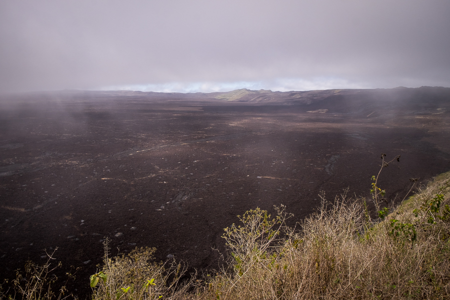 Fog lifting over the Sierra Negra caldera - Galapagos