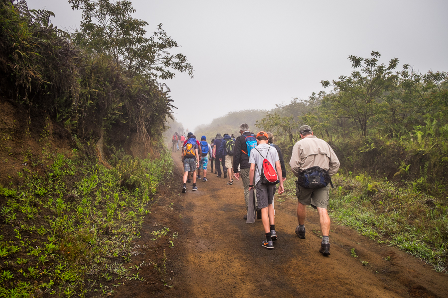 Fellow hikers heading into fog on the Sierra Negra trail on Isla Isabela - Galapagos